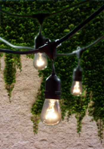 Bulbrite Lawn, and String Light w/Incandescent 15